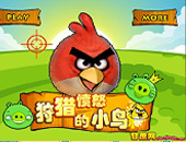 Play Angry Birds Hunting